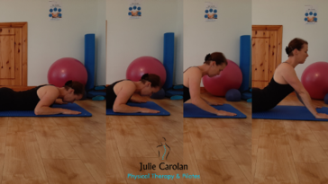 Swan Dive Julie Carolan Pilates